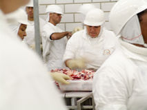 Food industry. SAO PAULO, BRAZIL, MARCH 09, 2006. Meat processing in food industry Stock Photos