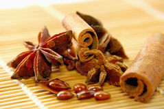 Food Ingrediant Series 3. Close up anise star and seed Stock Photos