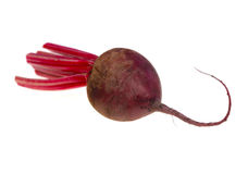 Food  ingredient beetroot Royalty Free Stock Photos