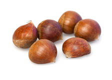 Food  ingredient chestnuts Stock Images