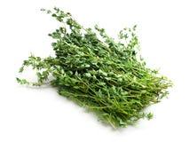 Food  ingredient - fresh thyme Royalty Free Stock Images