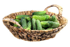Food  ingredient green cucumbers Royalty Free Stock Photo