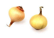 Food  ingredient onion Royalty Free Stock Images