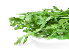 Food  ingredient - salad green ruccola (arugulla) Royalty Free Stock Photography