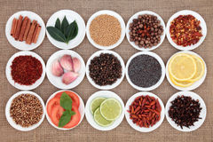 Food Ingredient Sampler Stock Photo