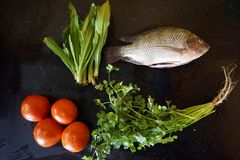 Ingredients fish, tomato and Coriander royalty free stock image