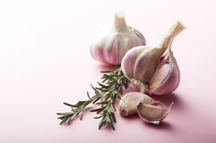 Food Ingredients: Garlic and Rosemary Royalty Free Stock Image
