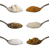 Food ingredients in spoons isolated Royalty Free Stock Image