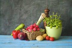 Food ingredients, various vegetables Royalty Free Stock Photo