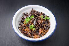 Food insect, Fried crickets in iron bowl Stock Photos
