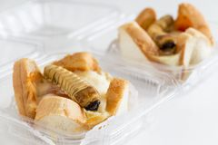 Food Insects: Worm beetle for deep-fried as food items in bread stock photos