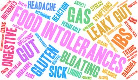 Food Intolerances Word Cloud. On a white background Royalty Free Stock Photos