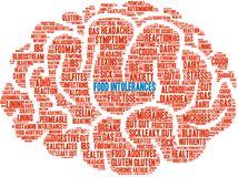 Food Intolerances Word Cloud. On a white background Stock Photography