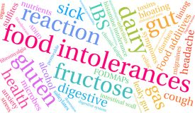 Food Intolerances Word Cloud. On a white background Royalty Free Stock Photography