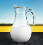 Jug of milk on meadow background Stock Photos