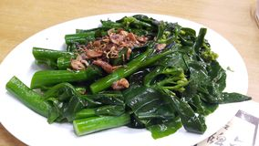 Food. Kale fried in oyster sauce Royalty Free Stock Photos