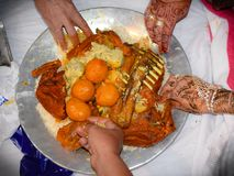 Food of kashmir served during marriages. Traditional food known as wazwan. Different varieties of meat. stock photo