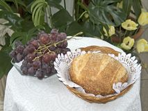 Food of Life. This a still life photo of grapes and bread stock photo