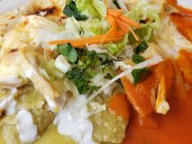 dish with chilaquiles in green and red sauce, typical mexican food with a hot flavor stock photo