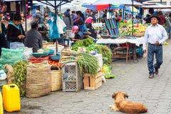 Food Market Activity Royalty Free Stock Image