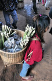 Food Market Asia girl of Cambodia Royalty Free Stock Photography
