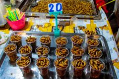 Night food market in Thailand, traditional asian market insects. Food market in Thailand, traditional asian market sell ready made food, fruits, vegetables, nuts stock images