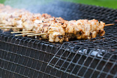 Food, meat, shish kebab. On a grill Stock Image