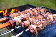 Food, meat, shish kebab. On a grill Royalty Free Stock Image
