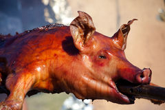 Food, meat, sucking pig. On a grill Royalty Free Stock Photo