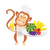 Food monkey Stock Photo
