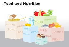 Food and Nutrition shown in infographic chart. On the white and gray background vector illustration