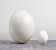 Ostrich egg and chicken egg on black table.  Royalty Free Stock Photos