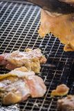 A juicy barbecued cuisine. A food photo of barbecued or grilled cuisine royalty free stock photo