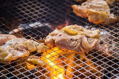 A juicy barbecued cuisine. A food photo of barbecued or grilled cuisine stock images