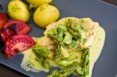 Food photography: chicken breast meat with asparagus and cream sauce Royalty Free Stock Images