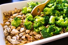 Broccoli, chicken and rice food preparation. Food photography: preparation of a tasty lunch or dinner. chicken with brown rice, cheese, broccoli and spices royalty free stock photo