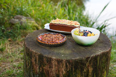 Food for picknick in nature: quiche with tomato, cake and fruits Royalty Free Stock Images