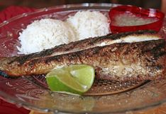 Food on a plate : fish, salsa and rice, French Guiana Stock Image