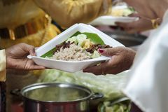 Hands of the poor receive food from the donor`s share. poverty concept. Food for the poor and homeless Help concept royalty free stock image