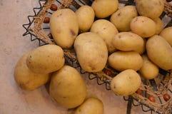 Potatos agricolture vegetables. Food potatos nutrition vegetables Royalty Free Stock Photography