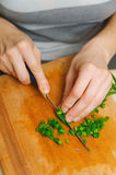 Food preparation. cutting green onion for vegetarian table Stock Images