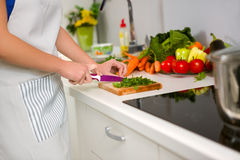 Food preparation in the kitchen Stock Images