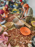 Food Preparation In A Sikh Langar Stock Photography