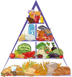 Food pyramid. Drawing of healthy food pyramid Royalty Free Stock Images