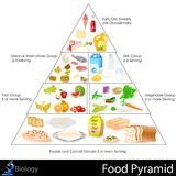 Food Pyramid. Easy to edit vector illustration of food pyramid chart Stock Photography