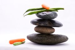 Food pyramid - green beans and baby carrots Royalty Free Stock Photography