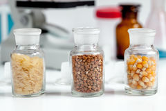 Food quality control in laboratory no one. Close up Stock Images