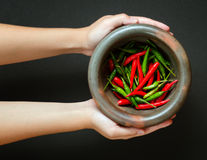 Red and green pepper in mortar Stock Photography
