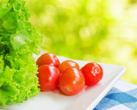 Red tomatoes and green lettuce on the white plate Royalty Free Stock Photos