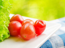 Red tomatoes and green lettuce on the white plate Stock Photos